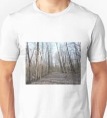 Winter to Spring Path Unisex T-Shirt