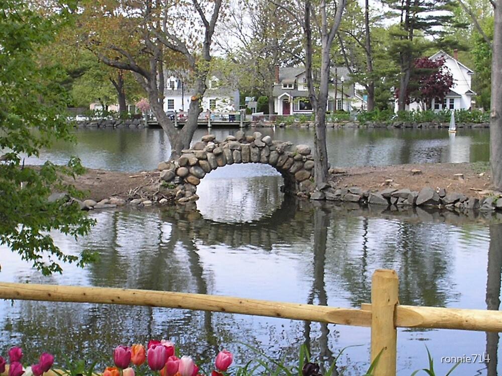lake by ronnie714