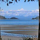 Storey's Beach BC by AnnDixon