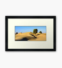 Forest in the Desert Framed Print