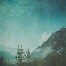 Misty Wilderness - Alpine Valley In Morning Haze by Dirk Wuestenhagen