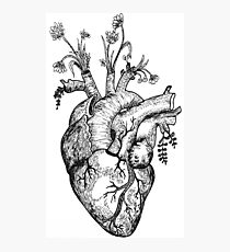 Naturaleza Corazon  /  Nature Heart Photographic Print