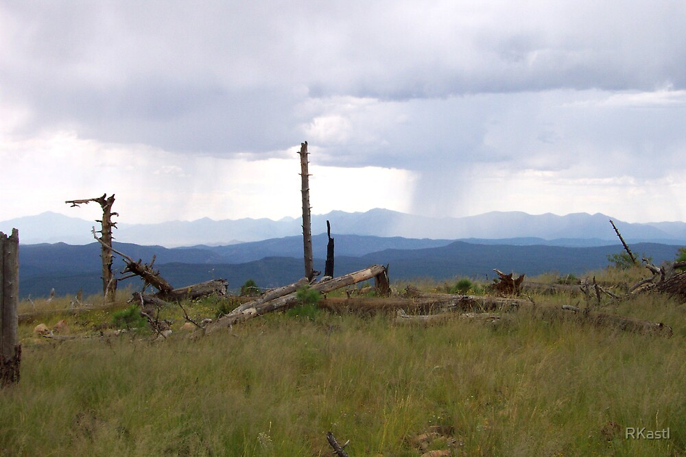 Storm Coming by RKastl