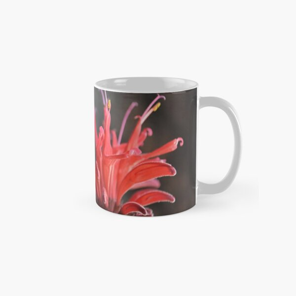 Red Mondara (Bee Balm) Classic Mug