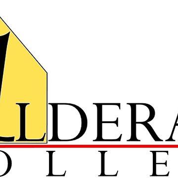 Alderaan College by talltimore