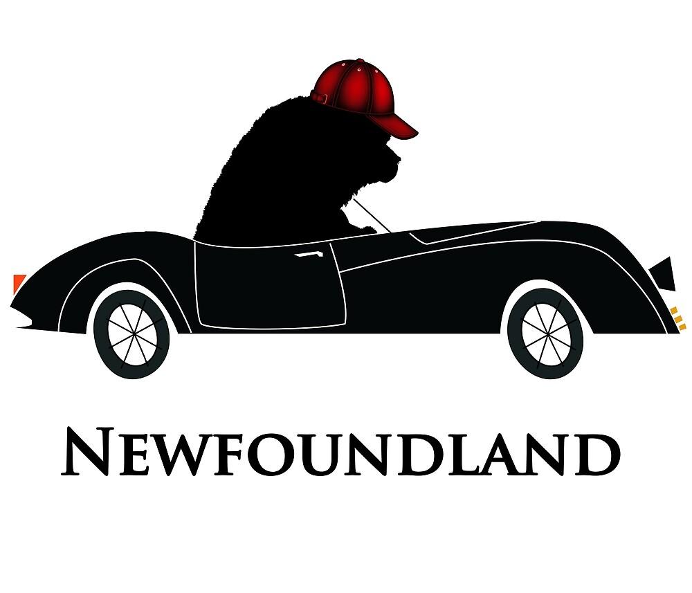 Newfoundland Dog Driving a Car by Christine Mullis