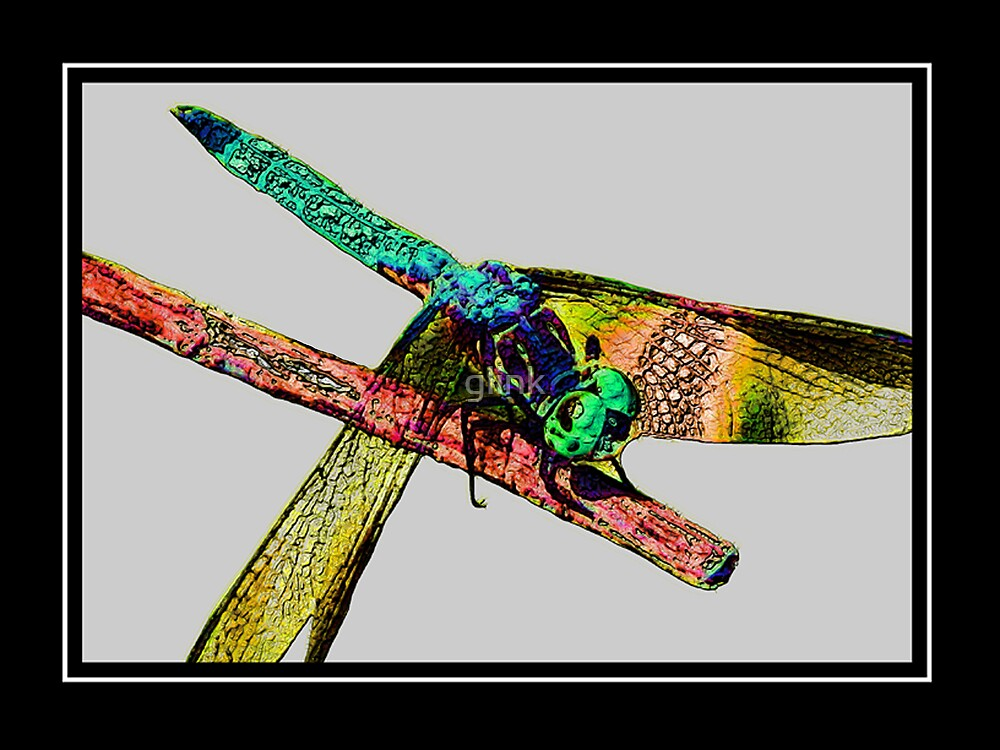 Mr.Dragonfly #2 by glink