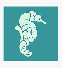 Seahorse Typography Photographic Print