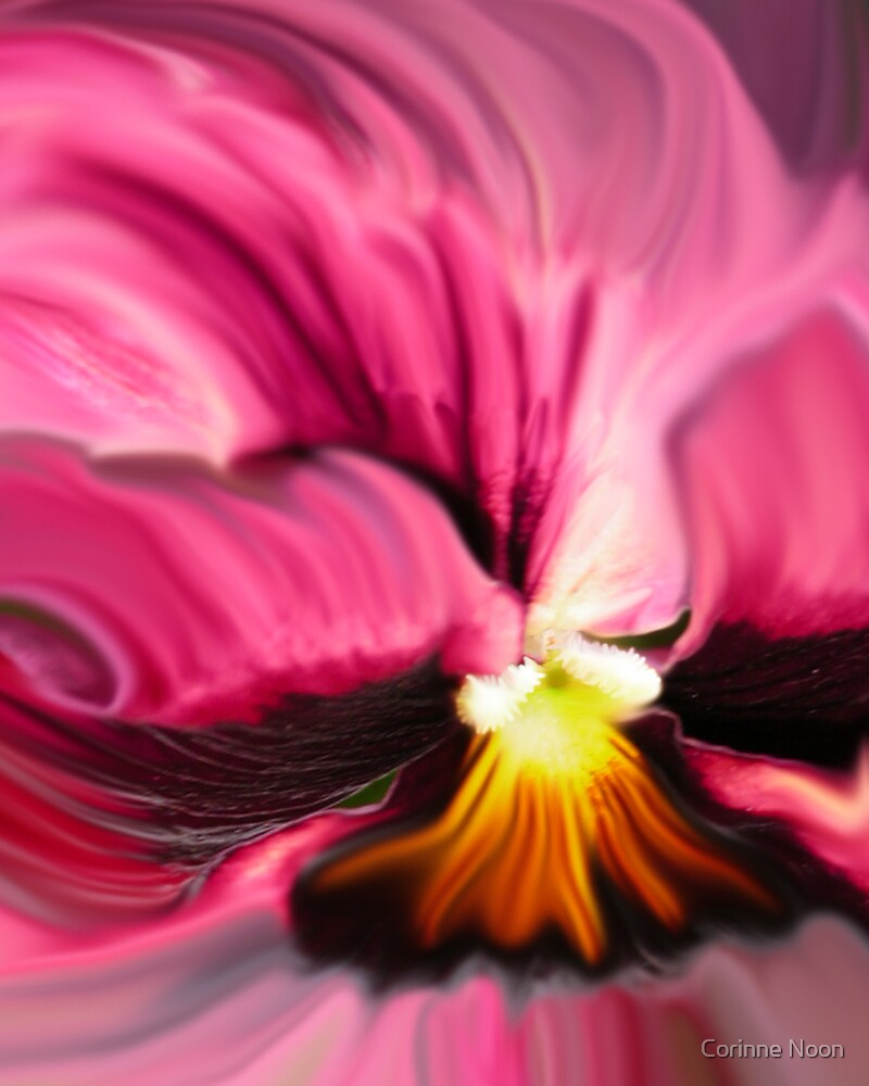 Pansy Blowing in the wind Closeup by Corinne Noon