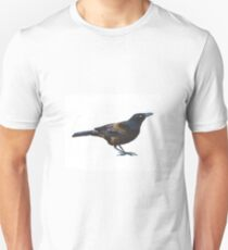 Common Grackle Looking Right T-Shirt