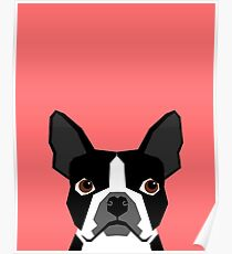 Kennedy - Boston Terrier customizable dog gifts for pet owners and Boston Terrier gifts for dog lovers Poster