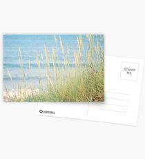 SEAGRASS Postcards