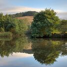Riverside by Joel McDonald