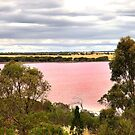 The pink Lake by cs-cookie