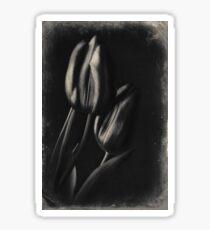 Tulip Flowers in Vintage Retro  Sticker