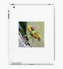 Hoverfly on a Passionflower iPad Case/Skin