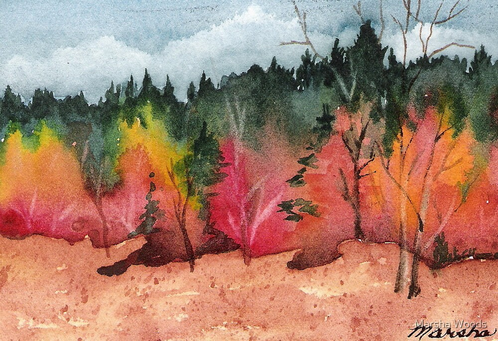 October Color by Marsha Woods