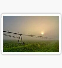 Irrigation Line Sticker