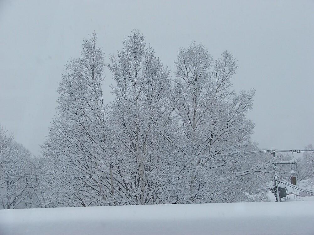 Winter in Neseko Japan by Michael Paterson