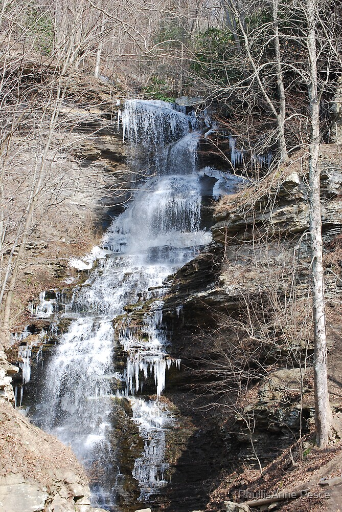 Waterfall by PhyllisAnne Pesce