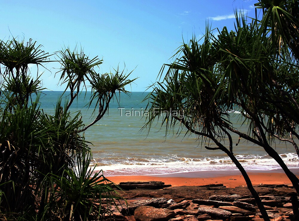Darwin Shores by Tainia Finlay