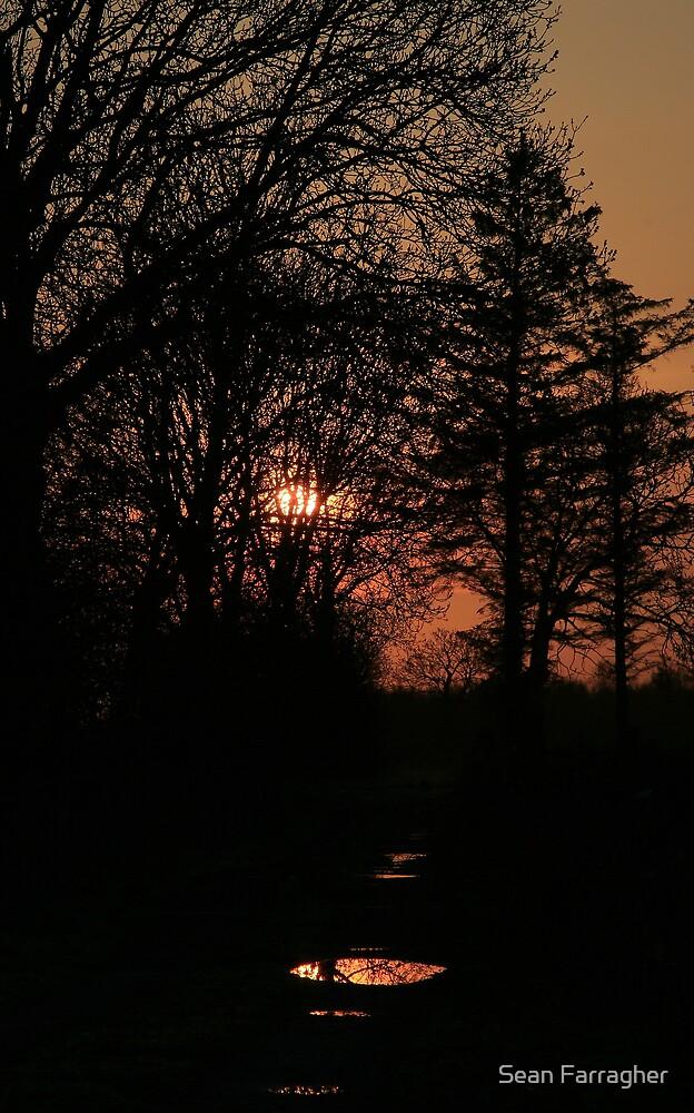 MORNING GLOW by Sean Farragher