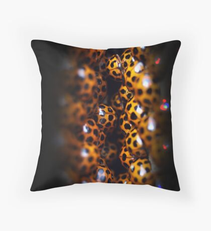Ladybird Cavern Throw Pillow