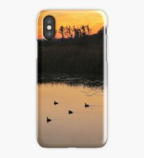 Coots on Econfina iPhone Case/Skin