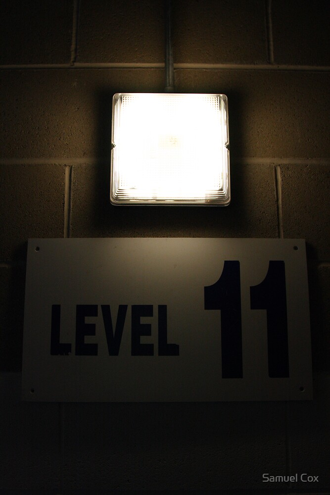 level 11 by Samuel Cox
