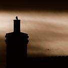 Sunrise bird on english chimney by wentbackward