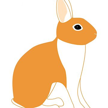 Orange White Eared Rabbit by DreamingLizard