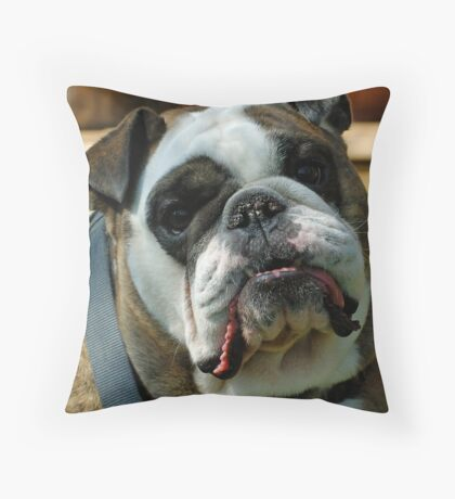 Only a Mother ..... Throw Pillow