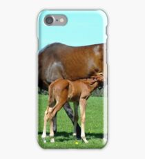 cheval/poulain iPhone Case/Skin
