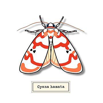 Moth01 by roarorange
