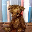 Handmade teddy bear Carter from Teddy Bear Orphans by Penny Bonser