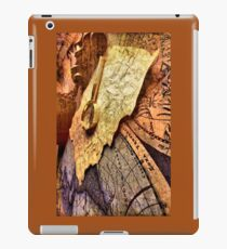 Ancient maps iPad Case/Skin