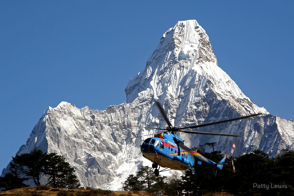 Himalaya Rescue, Nepal by Patty Boyte