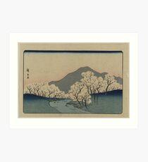 Grove of Cherry Trees - Japanese pre 1915 Woodblock Print Art Print