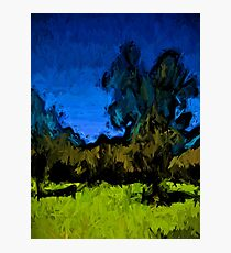 Gold Trees in the Blue Wind Photographic Print