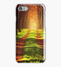 Forest Track iPhone Case/Skin