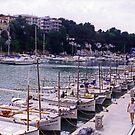 Porto Christo Harbour by Tom Gomez
