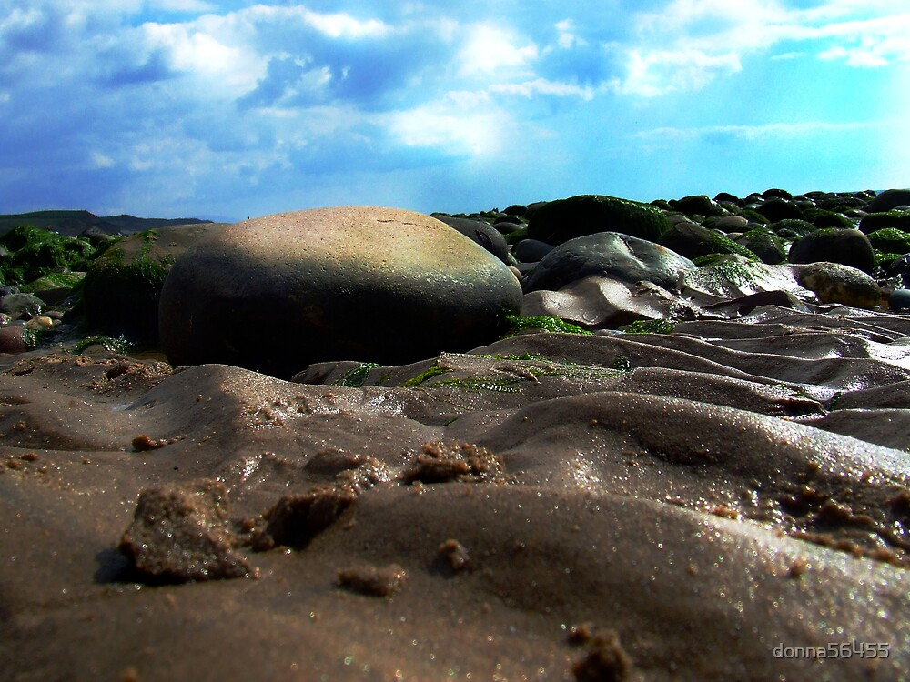 A crab's eye view by donna56455