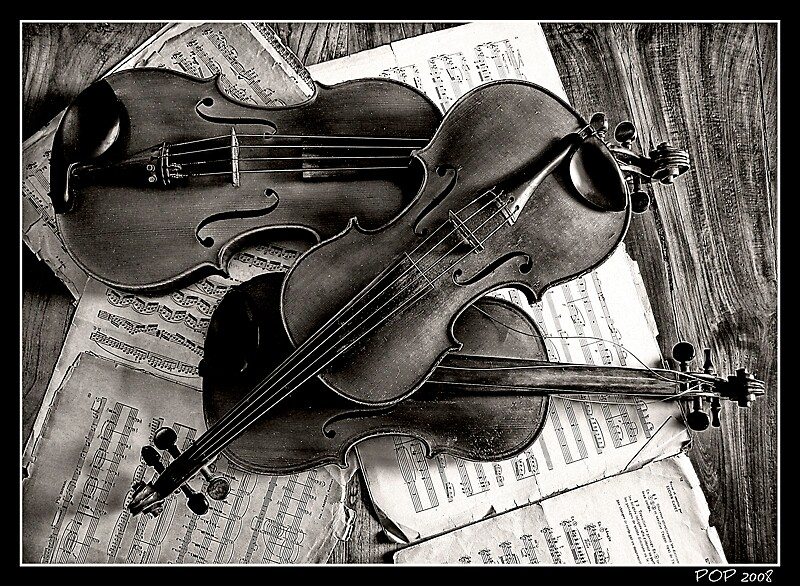 Violons & Alto by philopics