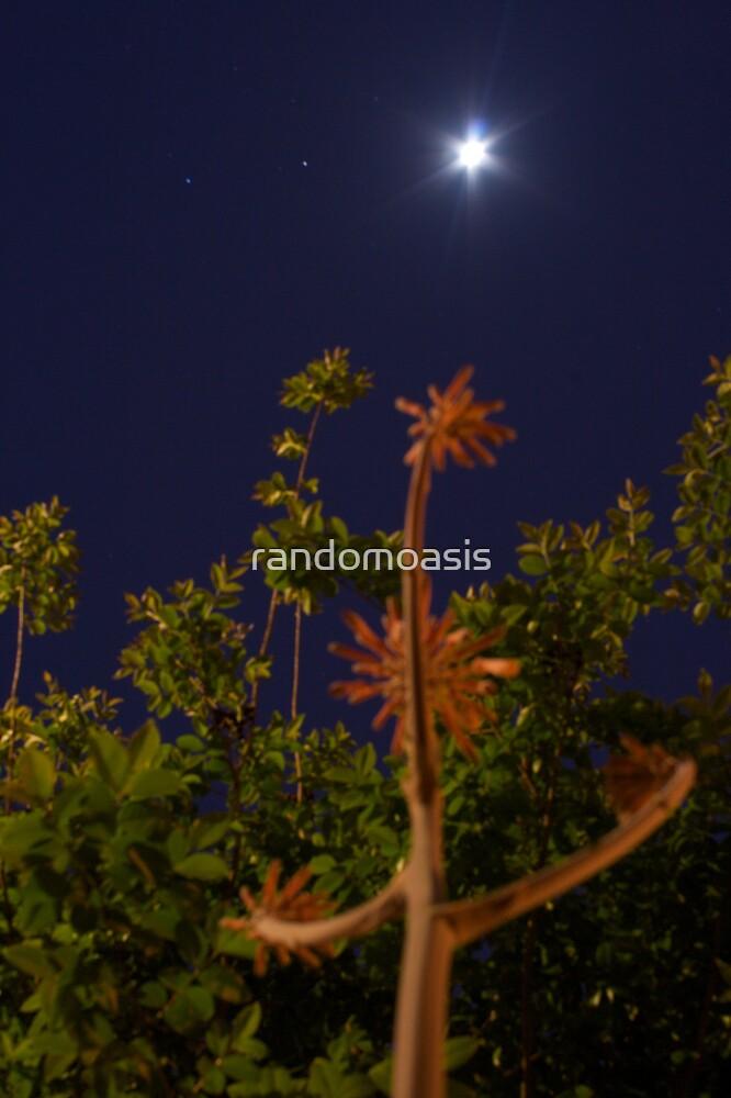 Earthly Landscape by randomoasis