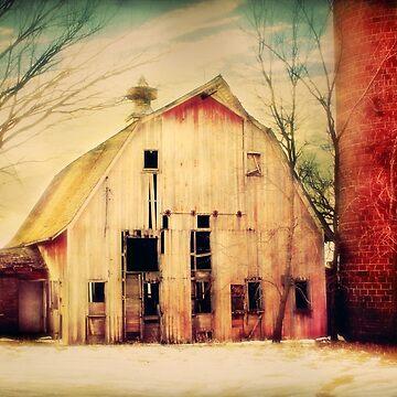 Estherville Barn & Silo by BarnArtandMore