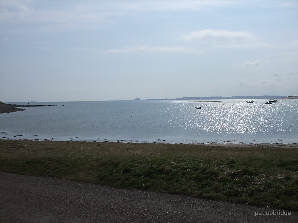 Shining View by pat oubridge