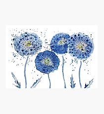 abstract blue dandelion watercolor  Photographic Print