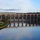 Die Royal Border Bridge von Berwick-upon-Tweed von trish725