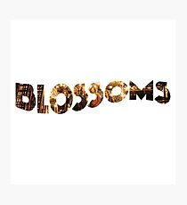 Blossoms Band Album  Photographic Print