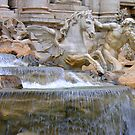 Another view of Trevi fountain by michelle123